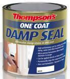 Thompson's One Coat Damp Seal